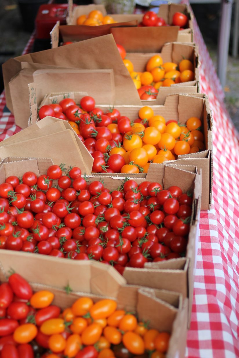 tomatoes-low-calorie-organics