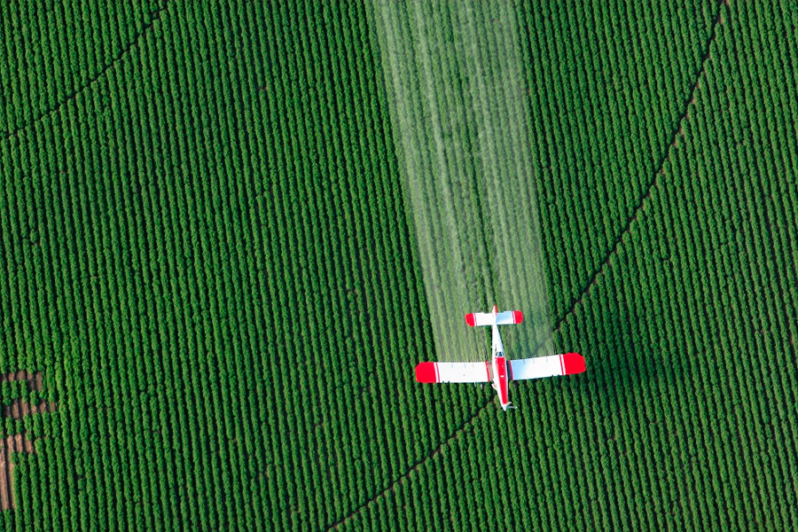 why-we-should-avoid-pesticides