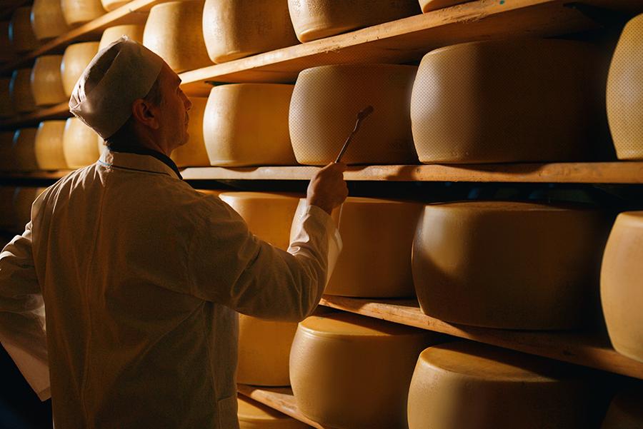 cheese-organic